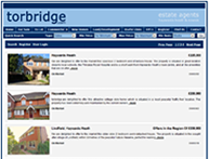 Latest estate agent web development