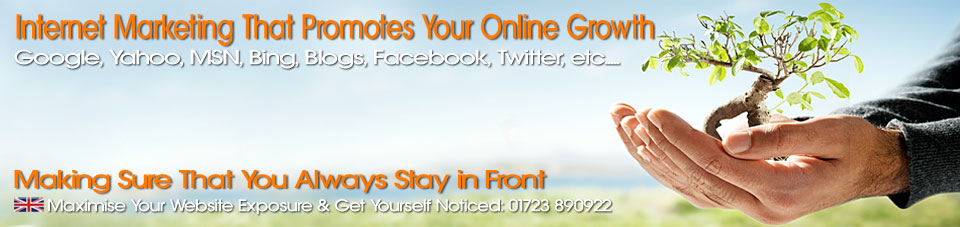 North Yorkshire Scarborough Website Hosting UK